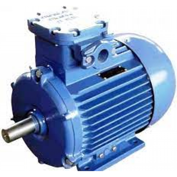 Двигатель подъема для лебедок электрических KCD 500/1000 220В