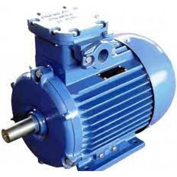 Двигатель подъема для лебедок электрических KCD 300/600 220В